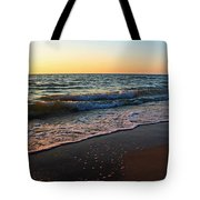The Disappearance Of Responsibility Tote Bag