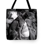 The Dog On A Bench Tote Bag