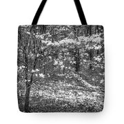 The Dogwoods Are Blooming It Must Be Spring. Tote Bag