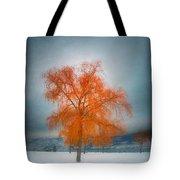 The Dreams Of Winter Tote Bag