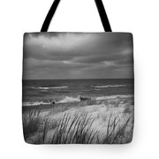 The Dunes In Winter Tote Bag