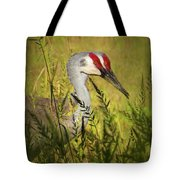 The Duo - Two Sandhill Cranes Tote Bag