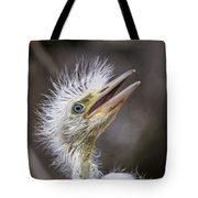 The Eager Great Egret Chick Tote Bag