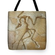 The Earliest Bird, Archaeopteryx Tote Bag