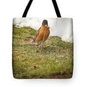 The Early Bird - Robin - Casper Wyoming Tote Bag