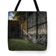 The Eclipse And The Barn Owl Tote Bag