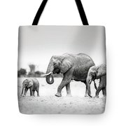 The Elephant Family Tote Bag