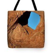 The Elephant's Eye Tote Bag