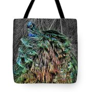 The Emperors Clothes Tote Bag