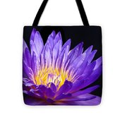 The Enchantress  Tote Bag by Lori Frisch