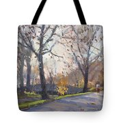 The End Of Fall At Three Sisters Islands Tote Bag