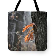 The End Of Fall Tote Bag