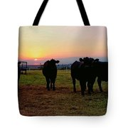 The End To A Long Day Tote Bag