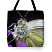 The Eye Of The Green-veined Butterfly. Tote Bag