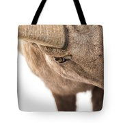The Eye Of The Ram Tote Bag