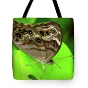 The Eyes Are Watching At You Tote Bag