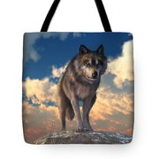 The Eyes Of Winter Tote Bag