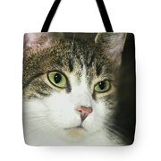 The Face Of Neglect Tote Bag