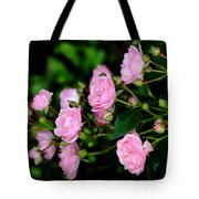 The Fairy Tote Bag