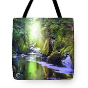 The Fairy Glen Gorge River Conwy Tote Bag