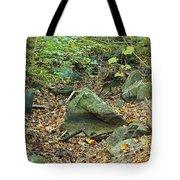 The Fall Of Broken Hearts Tote Bag