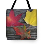 The Fallen Leaves Of Autumn Tote Bag