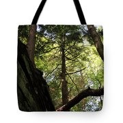 The Fallen Triangle Tote Bag