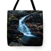 The Falls Of Black Creek In Autumn II Tote Bag