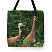 The Females Tote Bag