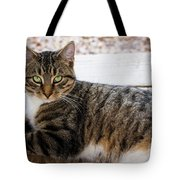 The Ferals-1412 Tote Bag