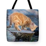 The Ferals-1451 Tote Bag