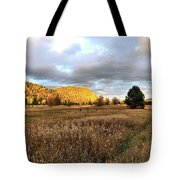The Field Of Dreams Tote Bag