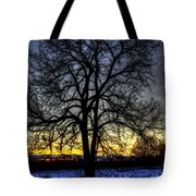 The Field Tree Hdr Tote Bag