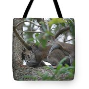 The Fight For Life Tote Bag