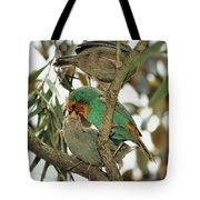 The Finch Family  Tote Bag
