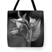 The Finer Things In Life Tote Bag