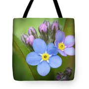 The First Blossom Of The Forget Me Not Tote Bag
