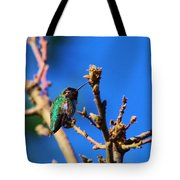 The First Hummingbird Tote Bag