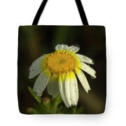 The First Light Tote Bag