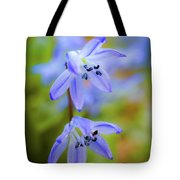 The First Spring Flowers Tote Bag