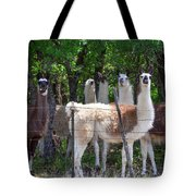 The Five Llamas Tote Bag