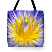 The Flame Of Beauty Spca1 Tote Bag