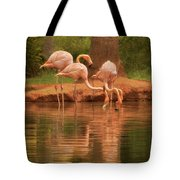 The Flock - The Serenity Of Flamingos At Water's Edge Tote Bag