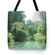 The Florida Calm Tote Bag