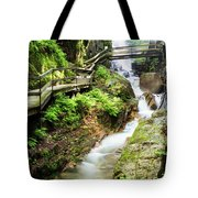 The Flume Gorge Lincoln New Hampshire Tote Bag