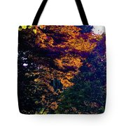 The Forest At Dusk Tote Bag
