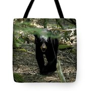 The Forest Bear Tote Bag