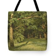 The Forest Clearing Tote Bag