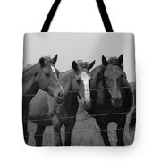 The Four Horses Tote Bag