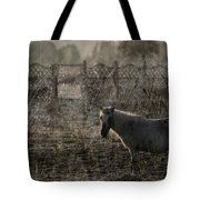 The Frosty Morning Tote Bag